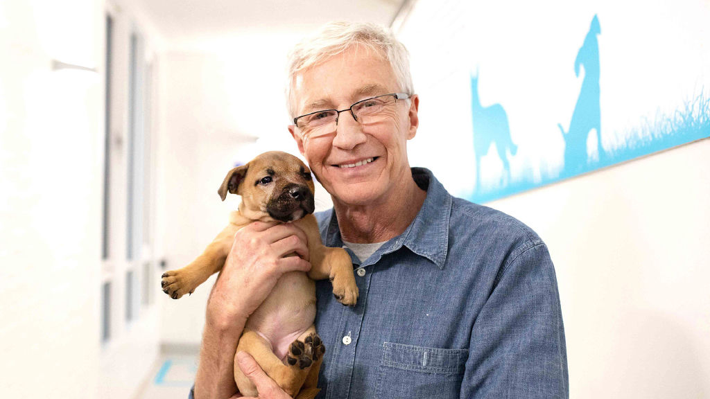 Paul O'Grady: For the Love of Dogs: What Happened Next