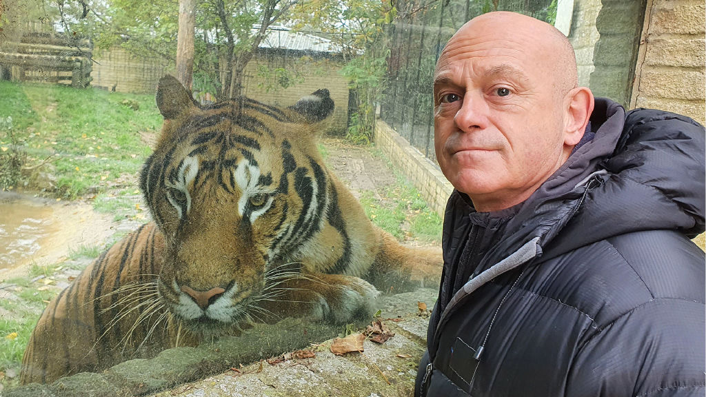 Britain's Tiger Kings: On the Trail with Ross Kemp